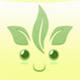 green-tea-group