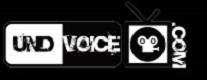 undvoice80